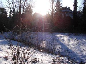 wintersterne_o