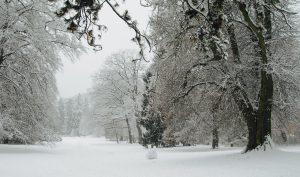 winterweite-nerotal2017jpg