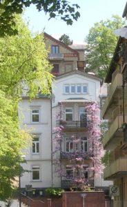 Blauregenhaus,Taunusstraße_o