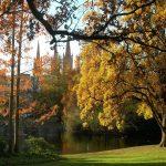 Warda- Herbst_o