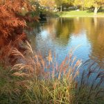 Herbstsee,2014
