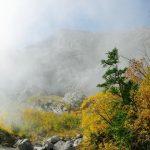 Nebel_o