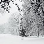 Winterweite, Nerotal,2017jpg